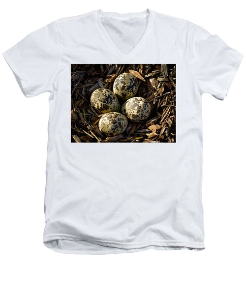Quartet Of Killdeer Eggs By Jean Noren Men's V-Neck T-Shirt by Jean Noren