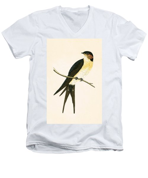Rufous Swallow Men's V-Neck T-Shirt by English School