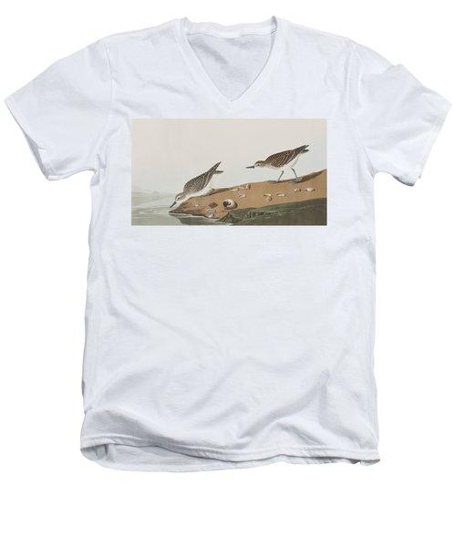 Semipalmated Sandpiper Men's V-Neck T-Shirt by John James Audubon