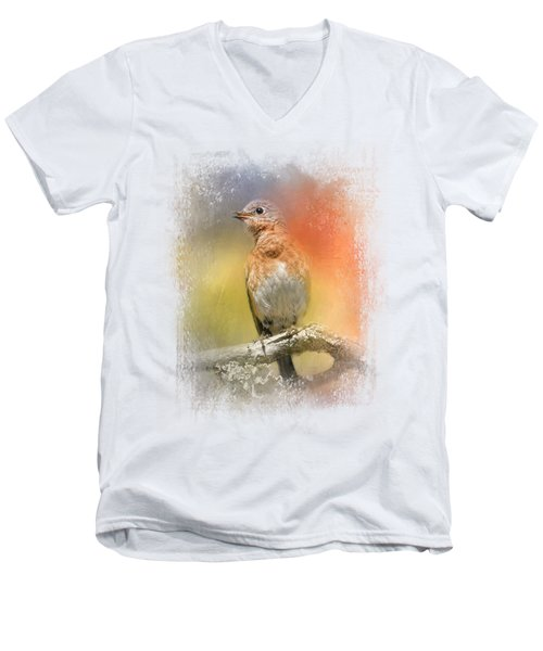 Spring Song Men's V-Neck T-Shirt by Jai Johnson