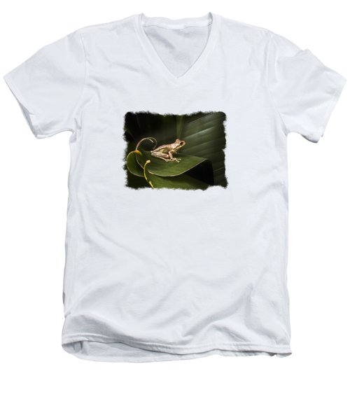 Surfing The Wave Bordered Men's V-Neck T-Shirt by Debra and Dave Vanderlaan