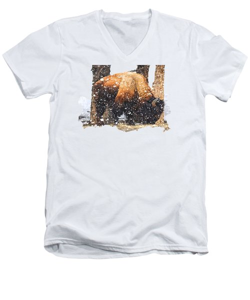 The Majestic Bison Men's V-Neck T-Shirt by Image Takers Photography LLC - Carol Haddon