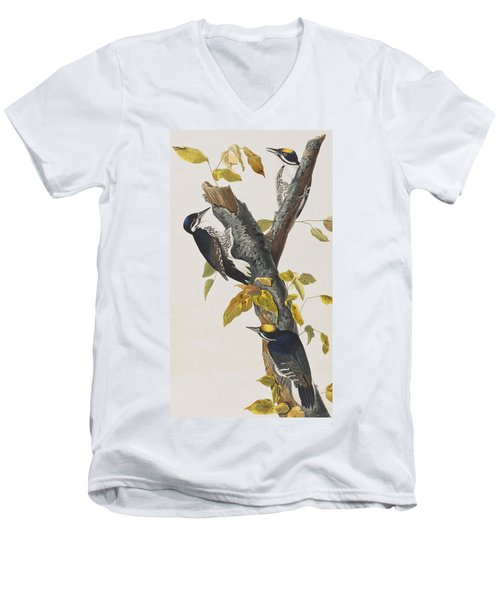 Three Toed Woodpecker Men's V-Neck T-Shirt by John James Audubon