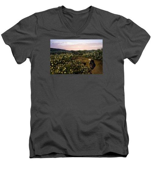 Atlantic Puffin At Burrow Skomer Island Men's V-Neck T-Shirt by Sebastian Kennerknecht