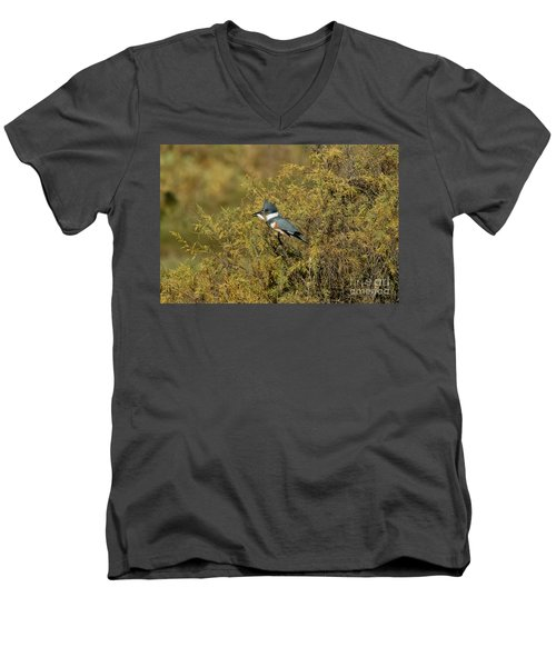 Belted Kingfisher With Fish Men's V-Neck T-Shirt by Anthony Mercieca