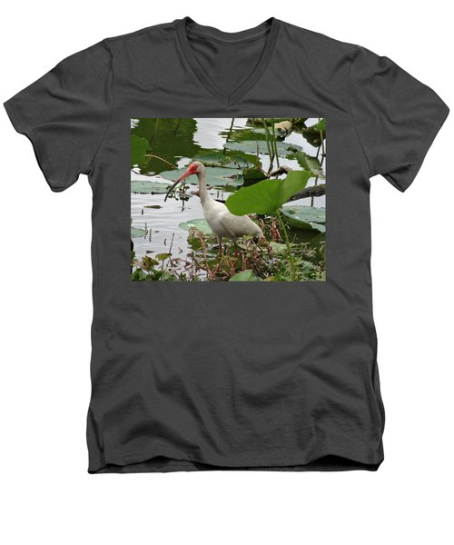 American White Ibis In Brazos Bend Men's V-Neck T-Shirt by Dan Sproul