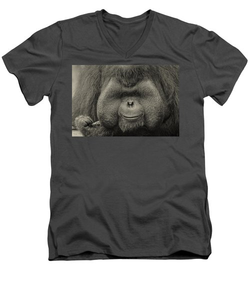 Bornean Orangutan II Men's V-Neck T-Shirt by Lourry Legarde