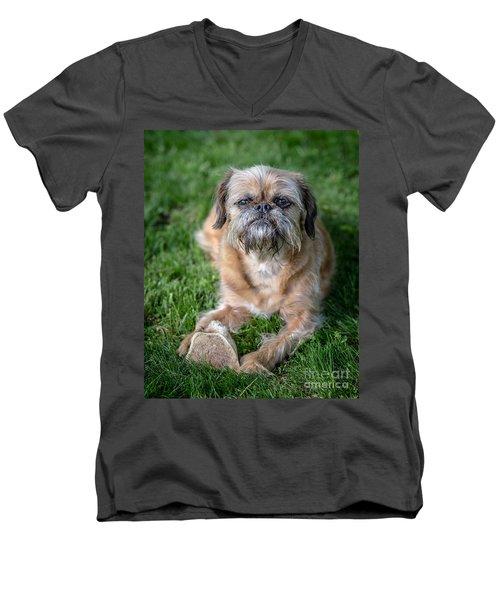 Brussels Griffon Men's V-Neck T-Shirt by Edward Fielding