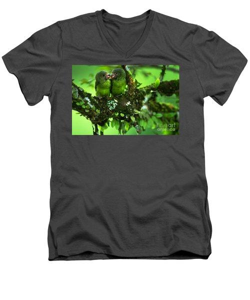 Cobalt-winged Parakeets Men's V-Neck T-Shirt by Art Wolfe