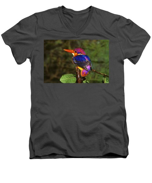 India Three Toed Kingfisher Men's V-Neck T-Shirt by Anonymous