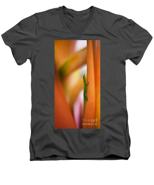 Island Friend Men's V-Neck T-Shirt by Mike Reid