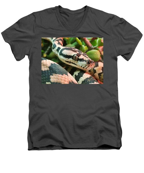 Jungle Python Men's V-Neck T-Shirt by Kelly Jade King