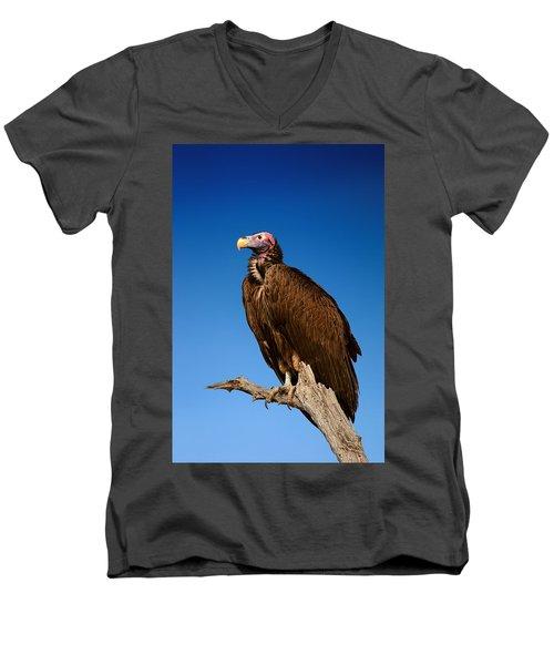 Lappetfaced Vulture Against Blue Sky Men's V-Neck T-Shirt by Johan Swanepoel