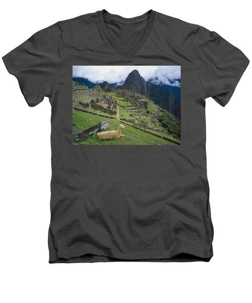 Llama At Machu Picchus Ancient Ruins Men's V-Neck T-Shirt by Chris Caldicott