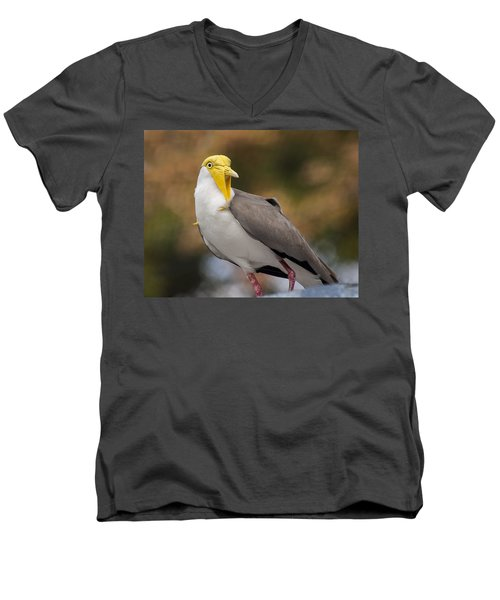 Masked Lapwing Men's V-Neck T-Shirt by Carolyn Marshall