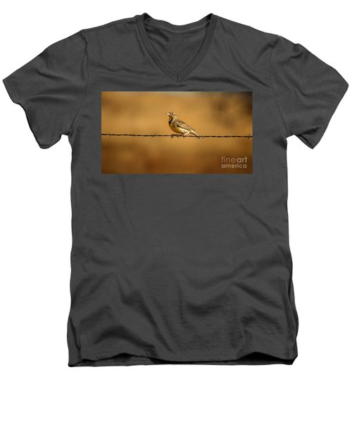 Meadowlark And Barbed Wire Men's V-Neck T-Shirt by Robert Frederick