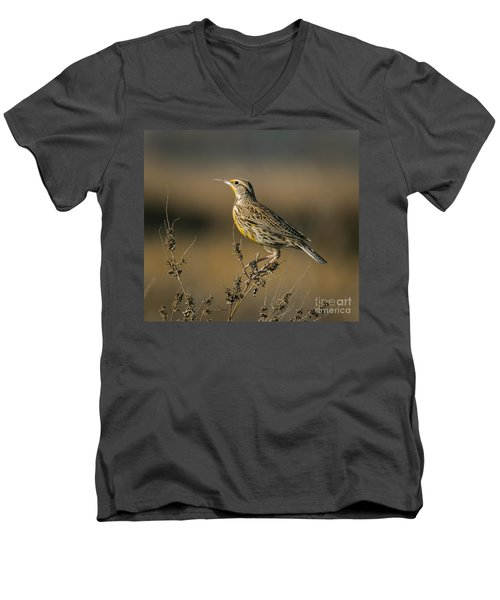 Meadowlark On Weed Men's V-Neck T-Shirt by Robert Frederick