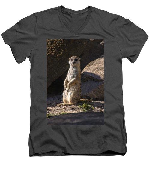 Meerkat Looking Forward Men's V-Neck T-Shirt by Chris Flees