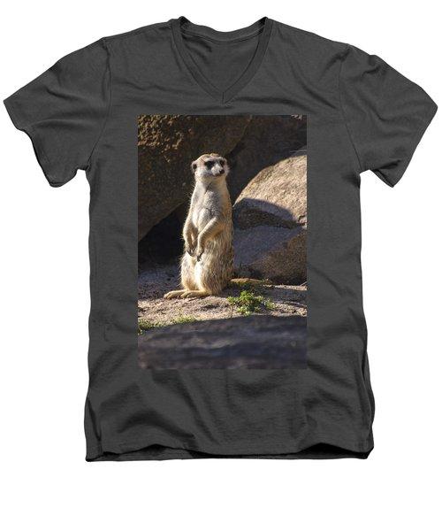 Meerkat Looking Left Men's V-Neck T-Shirt by Chris Flees