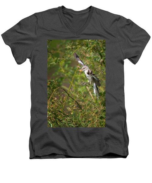 Mockingbird Men's V-Neck T-Shirt by Bill Wakeley