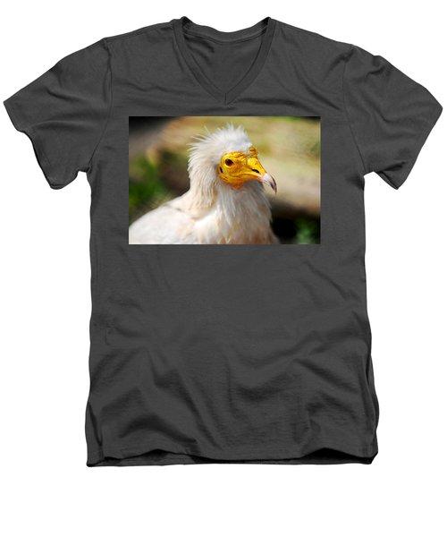 Pharaoh Chicken. Egyptian Vulture Men's V-Neck T-Shirt by Jenny Rainbow