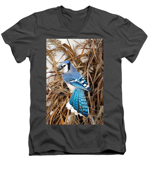 Portrait Of A Blue Jay Men's V-Neck T-Shirt by Bill Wakeley