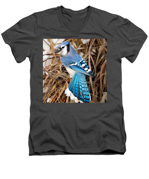 Portrait Of A Blue Jay Square Men's V-Neck T-Shirt by Bill Wakeley