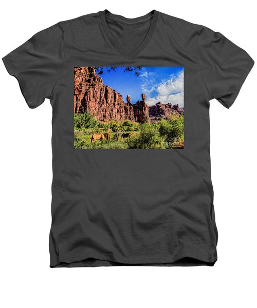 Private Home Canyon Dechelly Men's V-Neck T-Shirt by Bob and Nadine Johnston