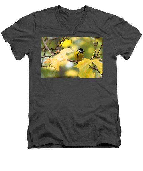 Sensibly Dressed - Featured 3 Men's V-Neck T-Shirt by Alexander Senin