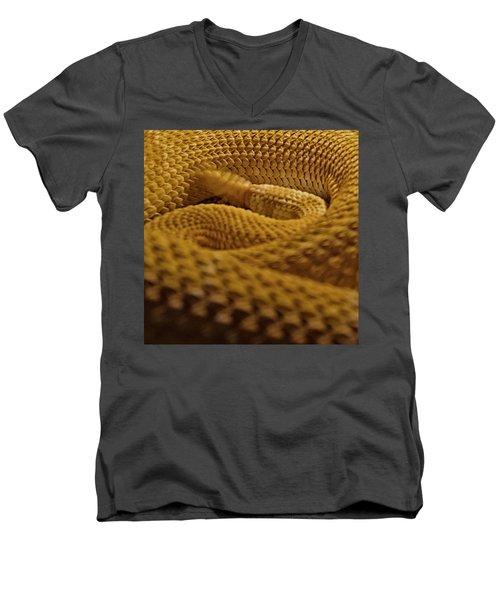 Shake Your Money Maker Men's V-Neck T-Shirt by Nathan Larson