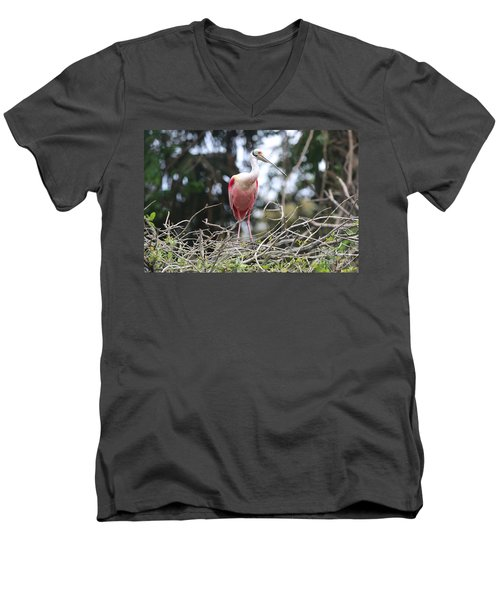 Spoonbill In The Branches Men's V-Neck T-Shirt by Carol Groenen