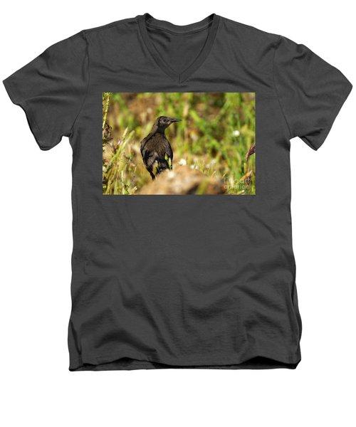 Starling Men's V-Neck T-Shirt by Guido Montanes Castillo
