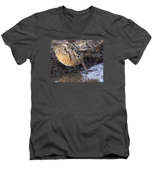 Streamside Woodcock Men's V-Neck T-Shirt by Timothy Flanigan