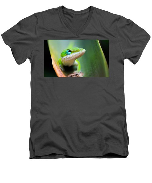 The Watching Eye Men's V-Neck T-Shirt by Shelby  Young