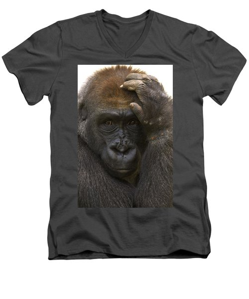 Western Lowland Gorilla With Hand Men's V-Neck T-Shirt by San Diego Zoo