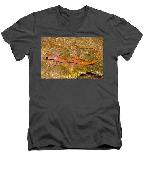 Cave Salamander Men's V-Neck T-Shirt by Dante Fenolio