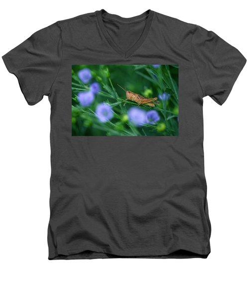 Grasshopper Men's V-Neck T-Shirt by Mike Grandmailson