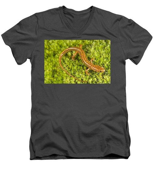 Longtail Salamander Eurycea Longicauda Men's V-Neck T-Shirt by Jack Goldfarb