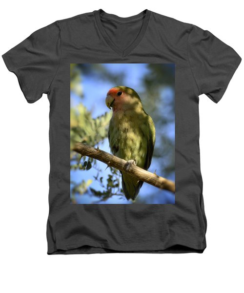 Pretty Bird Men's V-Neck T-Shirt by Saija  Lehtonen