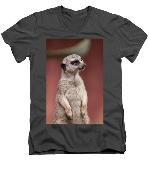 The Sentry Men's V-Neck T-Shirt by Michelle Wrighton