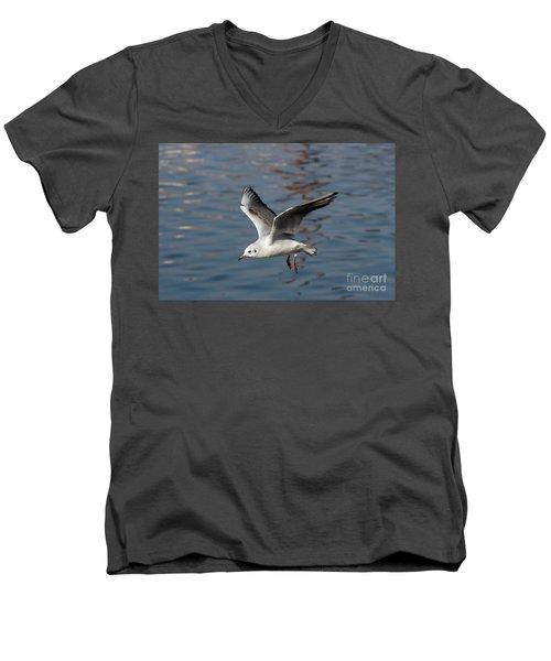 Flying Gull Men's V-Neck T-Shirt by Michal Boubin