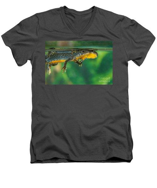Alpine Newt Triturus Alpestris Men's V-Neck T-Shirt by Gerard Lacz