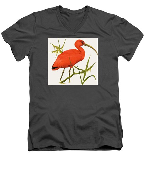 A Scarlet Ibis From South America Men's V-Neck T-Shirt by Kenneth Lilly