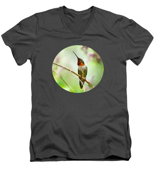 Hummingbird Looking For Love Men's V-Neck T-Shirt by Christina Rollo