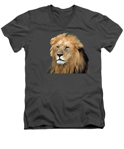 Masai Mara Lion Portrait    Men's V-Neck T-Shirt by Aidan Moran