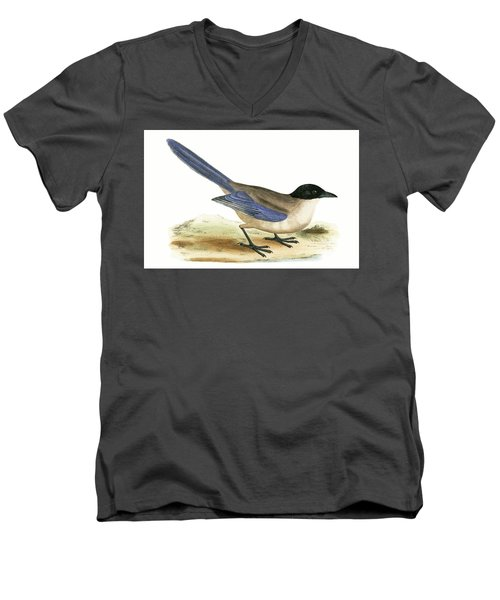 Azure Winged Magpie Men's V-Neck T-Shirt by English School