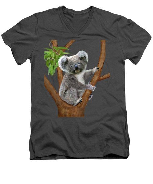 Blue-eyed Baby Koala Men's V-Neck T-Shirt by Glenn Holbrook
