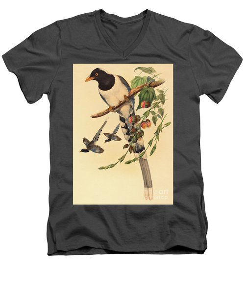 Blue Magpie, Urocissa Magnirostris Men's V-Neck T-Shirt by John Gould