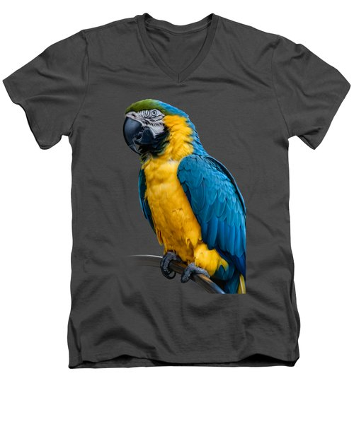 Blue Yellow Macaw No.1 Men's V-Neck T-Shirt by Mark Myhaver