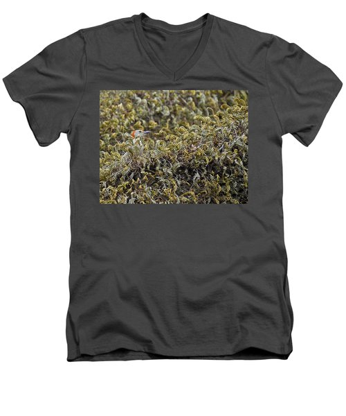 Camouflaged Red-bellied Woodpecker Men's V-Neck T-Shirt by Carolyn Marshall